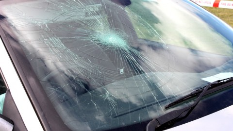 What can DIYers do concerning windshield repairs to fix or prevent more damage?