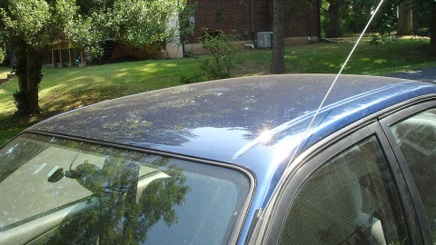 What is best for me if I accidentally break my car antenna?